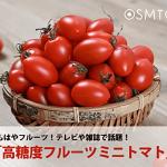 """テレビ・雑誌等でも話題の高糖度ミニトマト""""OSMICトマト""""【オスミック市場】"""